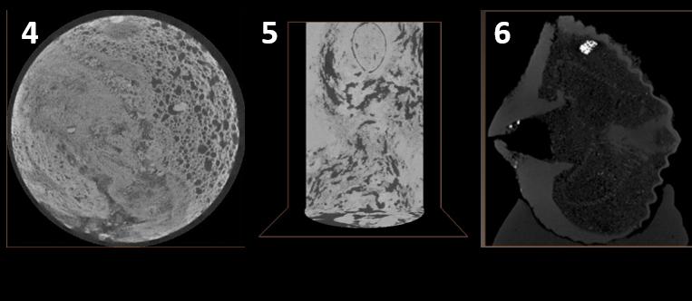 immagini tomografiche