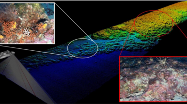 sea floor mapping